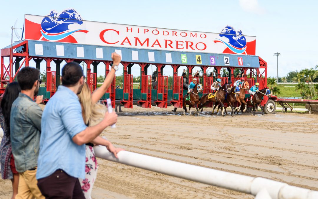 Amigos se llevan premio de $24 mil en Camarero y deciden invertir en un ejemplar