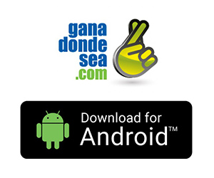 Android App 300 x250